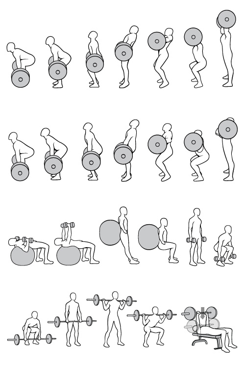 Vector-exercise-illustrations